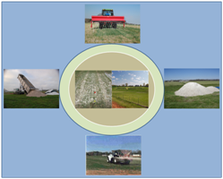 By-product Gypsum Uses in Agriculture