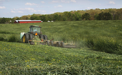 Tractor rolling down a cover crop