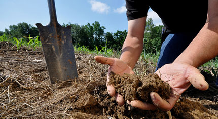Person holding soil in his hands in farm field