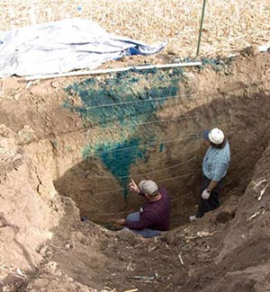 Two men standing in a soil pit examining blue tracer dye in the soil