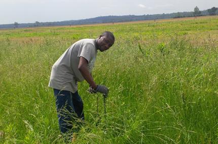 Taking soil samples in field