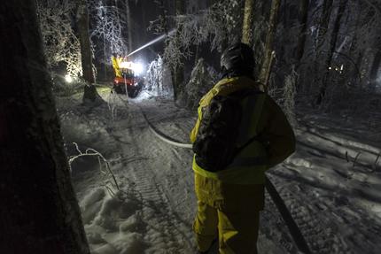 Aplicación de agua para congelar en árboles en el experimento de hielo para medir el impacto de los bosques