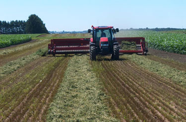 machinery harvesting alfalfa