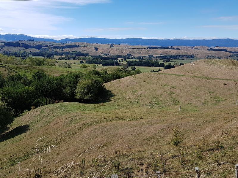 Paisaje campestre de la colina de Nueva Zelanda
