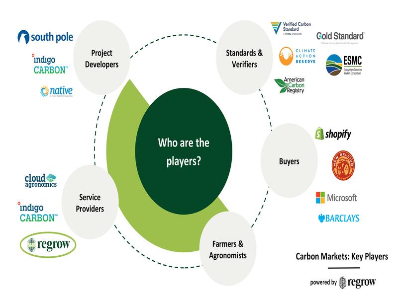 Gráfico que muestra a los actores de los mercados de carbono por categoría y empresas.