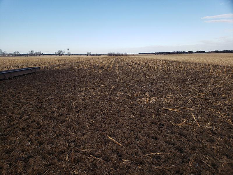 Campo vacío después de pastar con algunos rastrojos de maíz