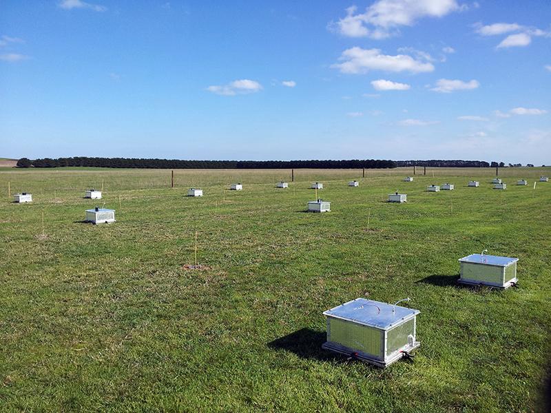 estaciones de medición en forma de caja en campo de hierba