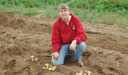 Jansky with potatoes in research field
