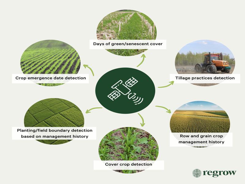 gráfico con siete círculos con varias fotografías agrícolas y descripciones de las funciones de la teledetección
