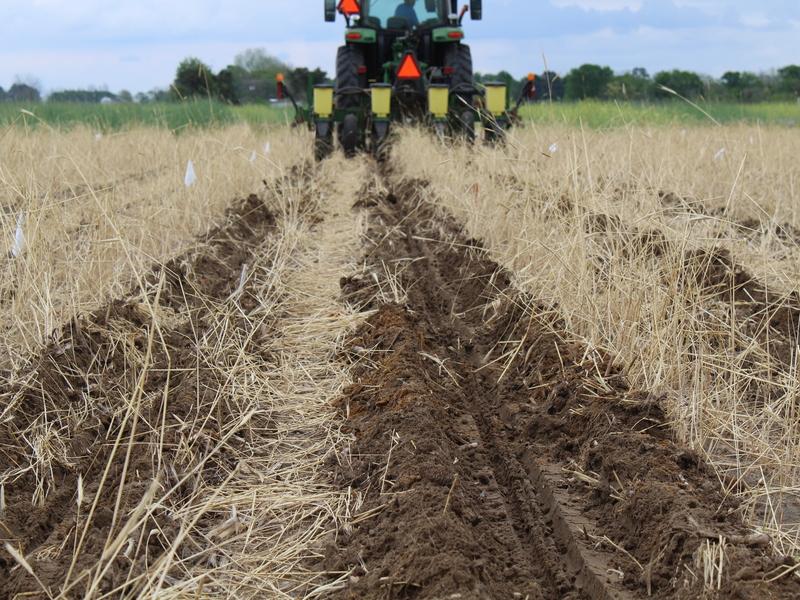 tractor e hileras de tierra en el campo