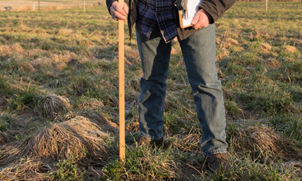 Measuring pasture grass
